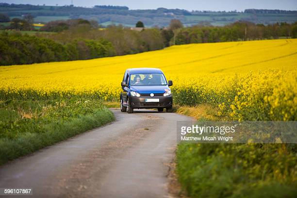 english countryside covered in yellow flowers. - on the move stock pictures, royalty-free photos & images