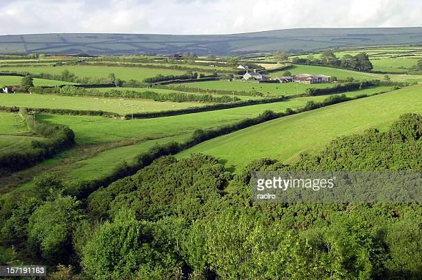 english countryside, exmoor national park - exmoor national park 個照片及圖片檔