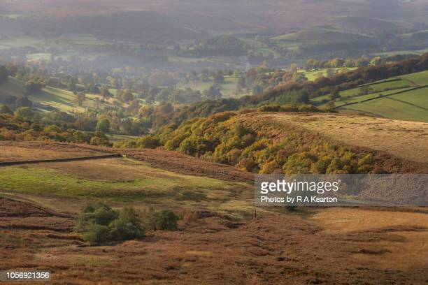 English countryside in soft autumn light