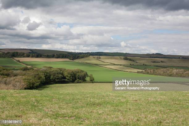english countryside - geraint rowland stock pictures, royalty-free photos & images