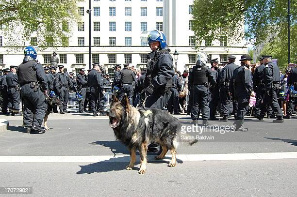 English Defence League, EDL, stage protest at Whitehall following the killing of soldier Lee Rigby. Riot Police and Police Dogs line the streets.