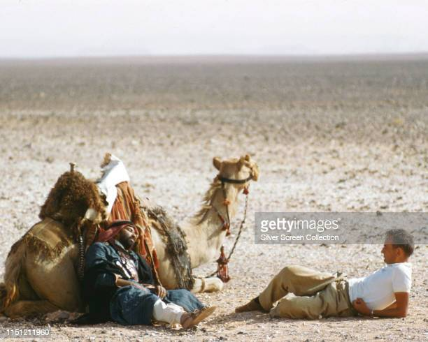 English director David Lean relaxing on the set of the biopic film 'Lawrence of Arabia', circa 1962.