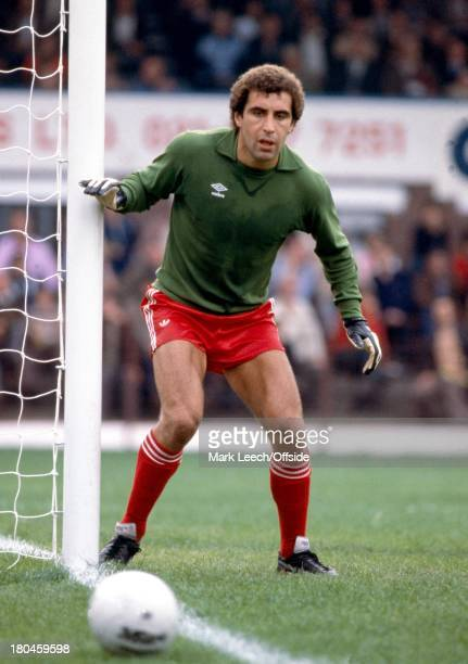 English Football League Division OneWest Bromwich Albion v Nottingham ForestForest goalkeeper Peter Shilton