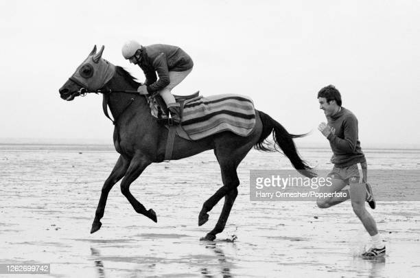 English footballer and Liverpool captain Emlyn Hughes runs alongside the racehorse Red Rum during a training run on Formby Sands near Liverpool on...