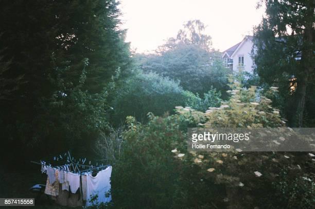 English Garden at Dusk