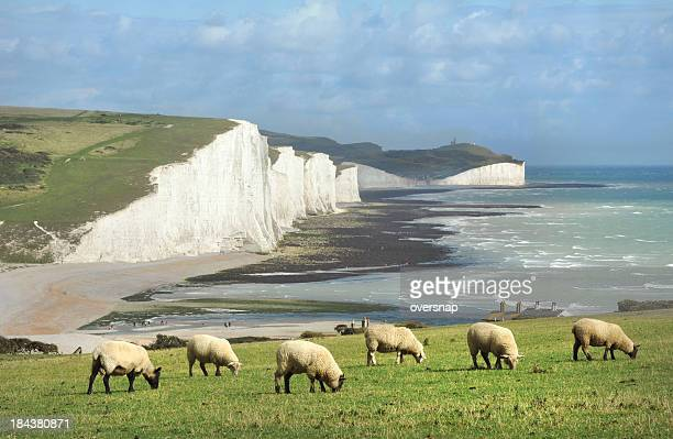 english idyll - seven sisters cliffs stock photos and pictures