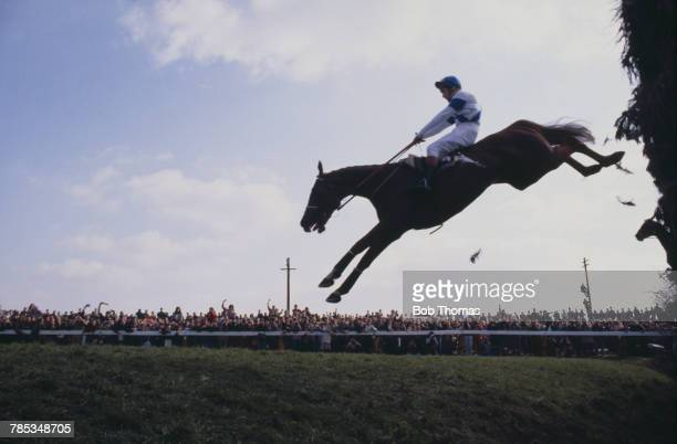English jockey Bob Champion on Aldaniti clearing Becher's Brook for the second time on the way to victory in the Grand National at Aintree Racecourse...