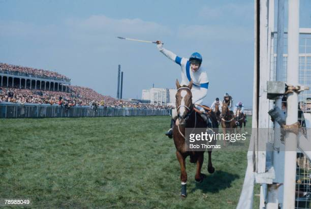 English jockey Bob Champion rides Aldaniti to victory in the Grand National at Aintree Racecourse Liverpool 4th April 1981