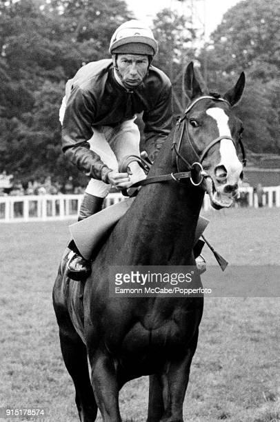 English jockey Lester Piggott at Sandown Races United Kingdom 1984