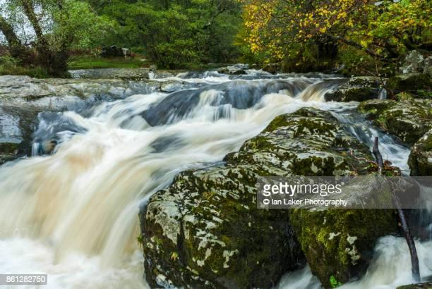 English Lake DIstrict, Cumbria, England. October 28 2006. Daytime shot of Aira Beck, feeding Aira Force waterfall.