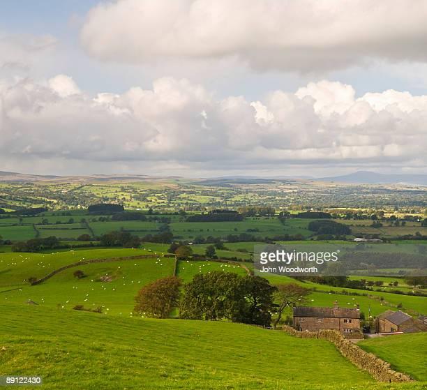 english landscape - 飼い葉桶 ストックフォトと画像