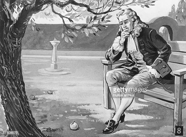 English mathematician and physicist Sir Isaac Newton contemplates the force of gravity as the famous story goes on seeing an apple fall in his...