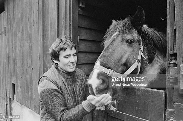 English musician and actor Davy Jones pictured feeding a horse at his stables near East Grinstead Sussex on 21st February 1979