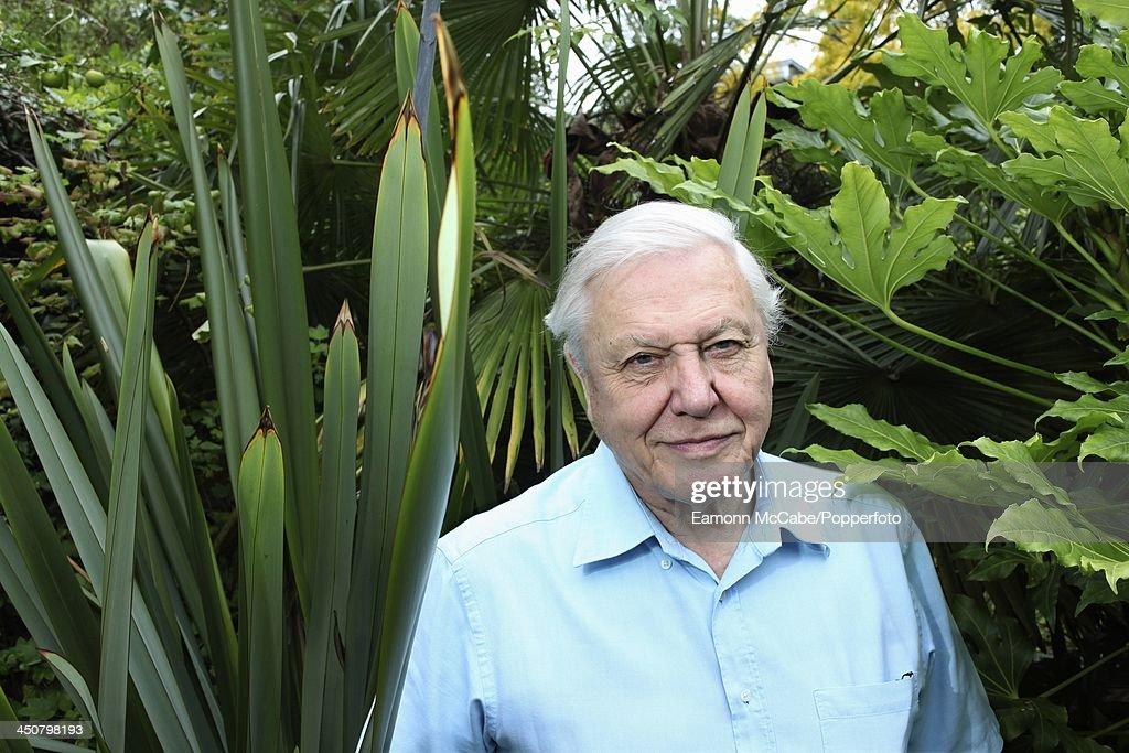 David Attenborough : News Photo