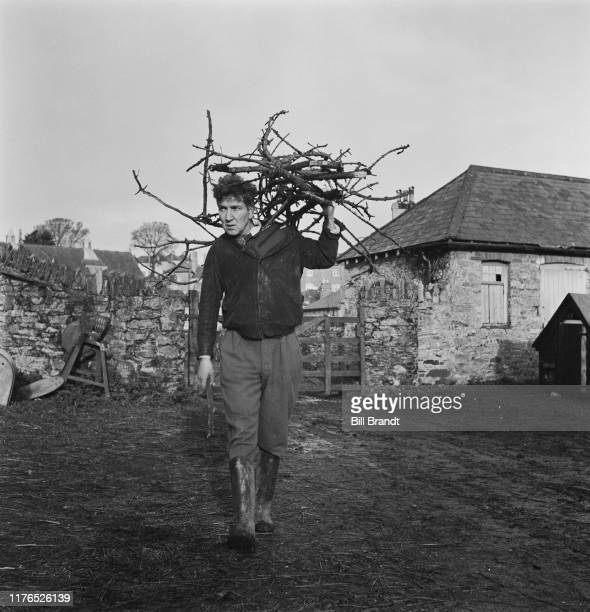 English poet novelist essayist and critic Robert von Ranke Graves collects kindling at Vale House his home in Galmpton near Brixham Devon December...
