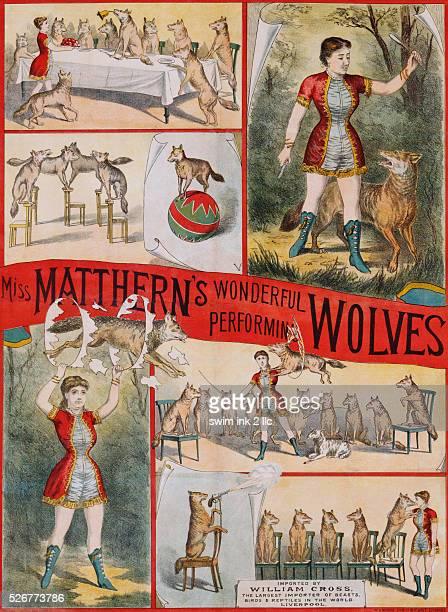 English Poster for Miss Matthern's Wonderful Performing Wolves