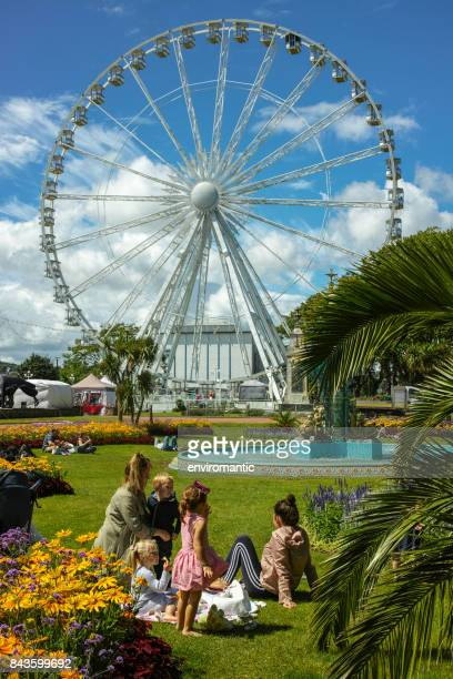 english riviera wheel at torquay seen from the park along the seafront. - torquay,_victoria stock pictures, royalty-free photos & images