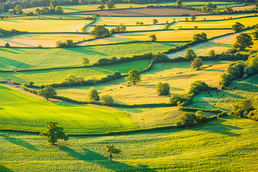 English rolling agricultural landscape 1178802119