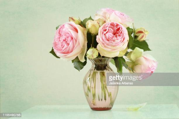 english roses - vase stock pictures, royalty-free photos & images