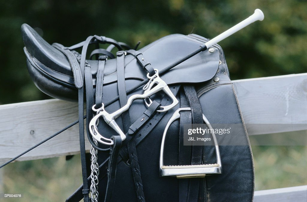 English Saddle on Fence : Stock Photo