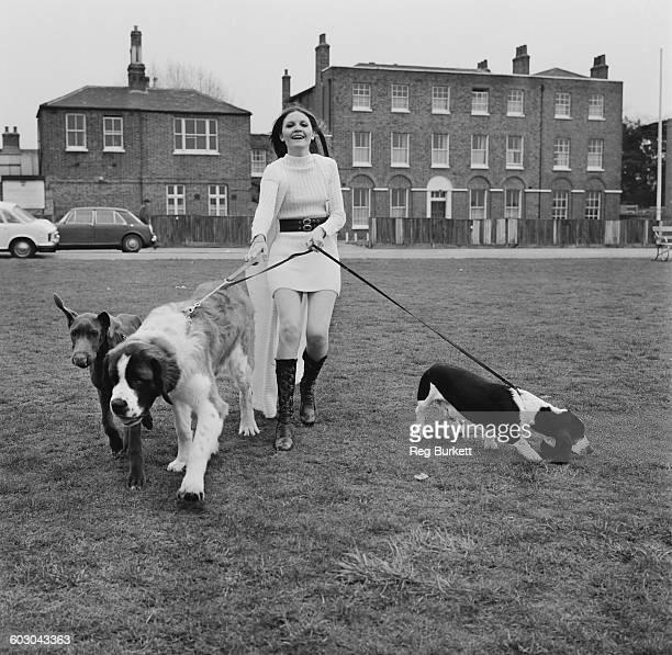 English singer Sandie Shaw out walking her three dogs UK 27th March 1970