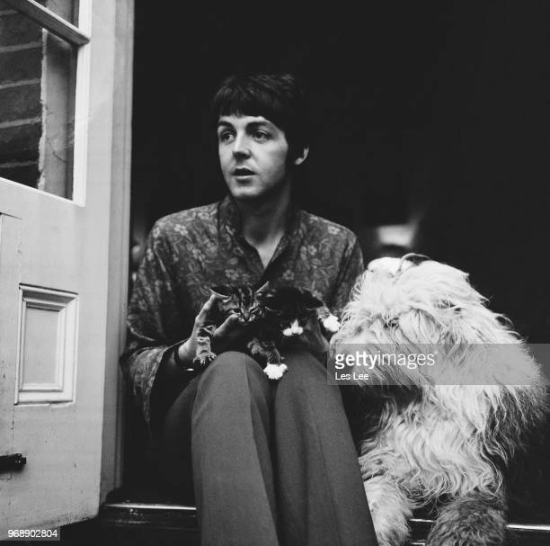 English singer-songwriter and musician Paul McCartney with his dog, English Sheepdog Martha, and two kittens at his house in St John's Wood, London,...