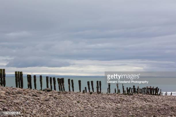 english stone beach in devon - ポーロック ストックフォトと画像