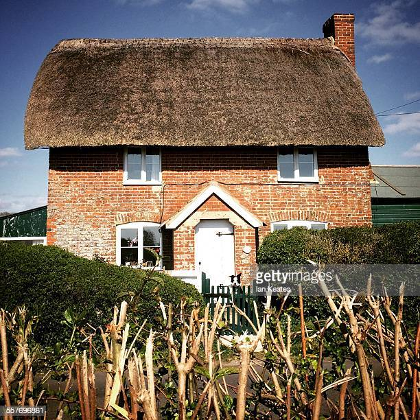 English thatched cottage blue sky white clouds foreground hedge collie dog
