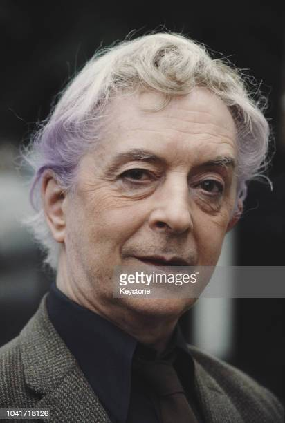 English writer Quentin Crisp , 1981.