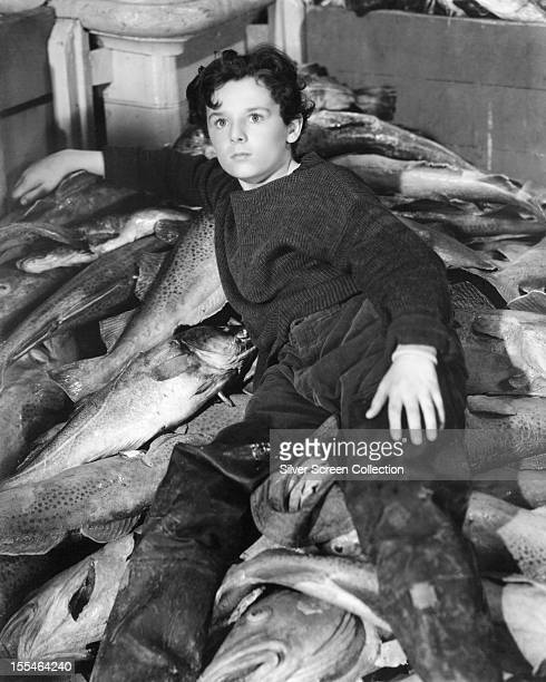 EnglishAmerican child actor Freddie Bartholomew as Harvey Cheyne in 'Captains Courageous' directed by Victor Fleming 1937