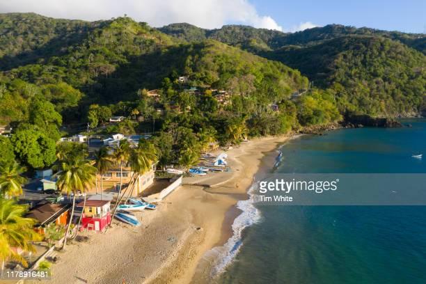 englishmans bay beach, tobago - trinidad and tobago stock pictures, royalty-free photos & images