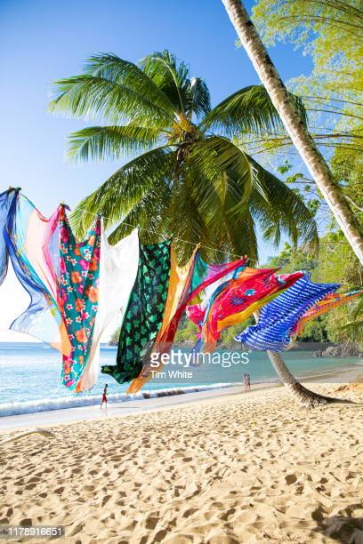 englishmans bay, tobago, caribbean - steel drum stock photos and pictures