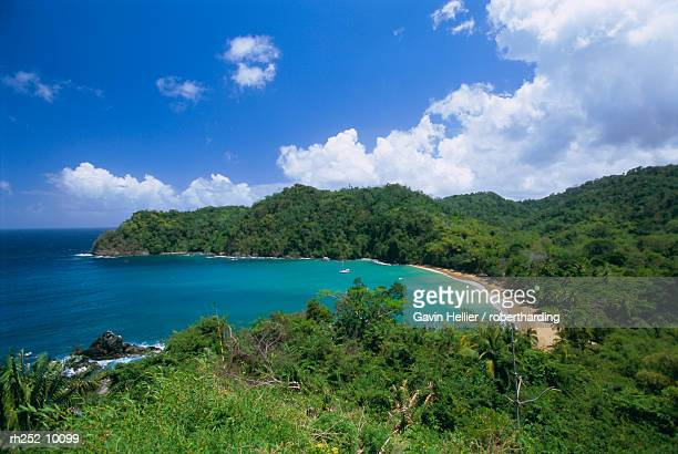 englishmans bay, tobago, trinidad and tobago, west indies, caribbean, central america - paisajes de trinidad tobago fotografías e imágenes de stock
