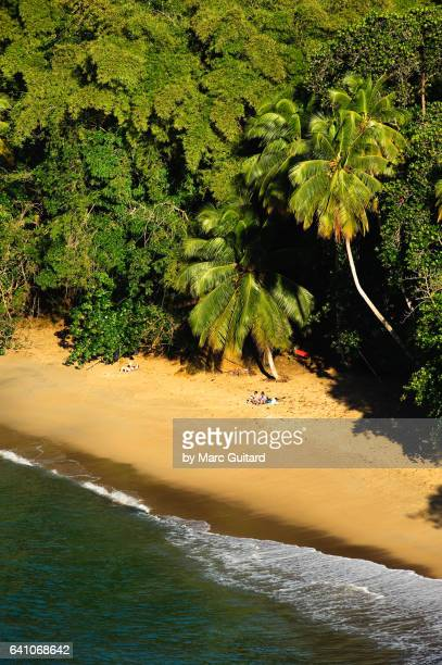 englishman's bay, tobago, trinidad & tobago - paisajes de trinidad tobago fotografías e imágenes de stock
