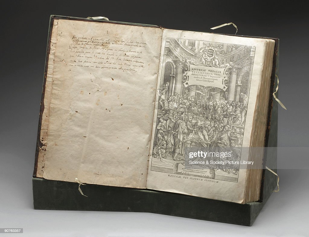 500 Years Since The Birth Of Andreas Vesalius Photos and Images ...