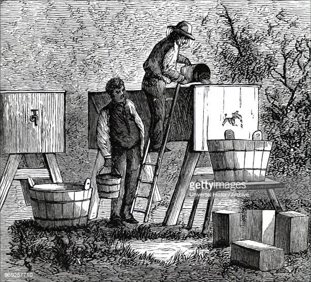 Engraving depicting a beekeeper clearing honey by straining it into settling tanks and then drawing off by tap after leaving it to stand for a number...