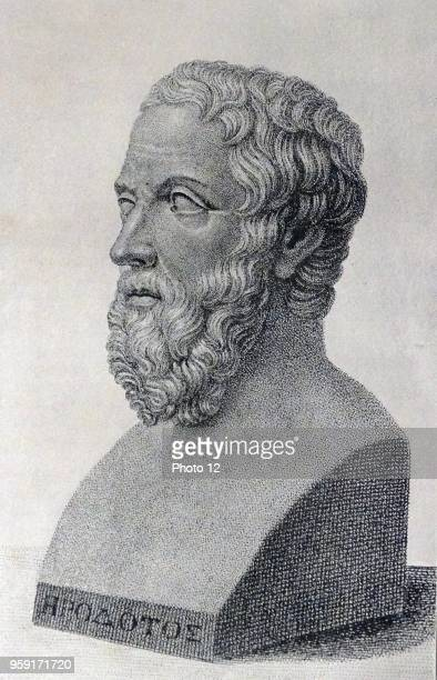Engraving depicting a bust of Herodotus a Greek historian. Dated 5th Century BC.