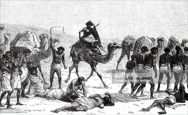Engraving depicting Abyssinian slaves being taken from the Sudan across the desert to the Red Sea to be taken to Jeddah Dated 19th century
