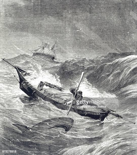 Engraving depicting Alfred Johnson fighting off a Shark during his singlehanded voyage across the Atlantic Ocean Alfred 'Centennial' Johnson a...