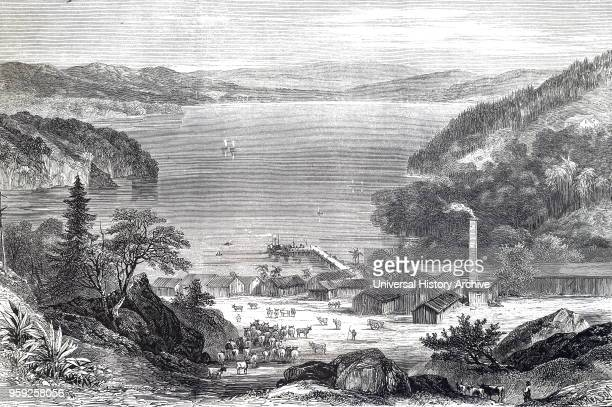 Engraving depicting an Australian meat curing factory which produced tallow and hides Before the introduction of refrigerated vessels the products of...