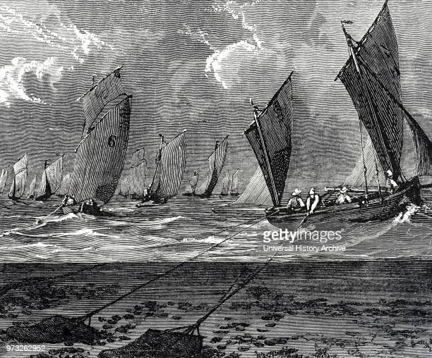 Engraving depicting Marennes fishermen dredging for oysters Dated 19th century