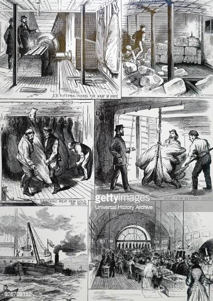 Engraving depicting movement of chilled meat from a ship to market Dated 19th century