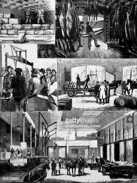 Engraving depicting the process of moving chilled meat from the US to Liverpool aboard the Ohio 1 Ice store between decks 2 Sending meat up from the...