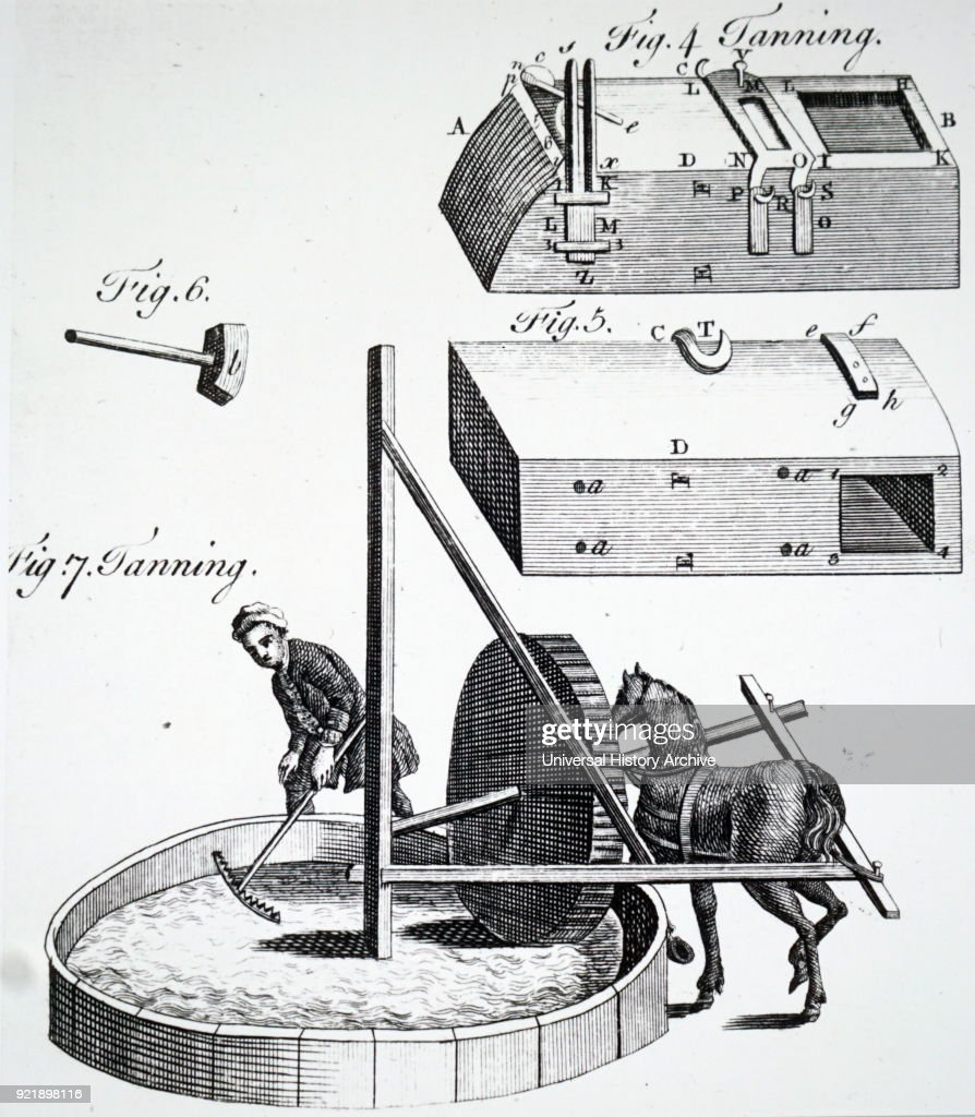 Engraving depicting the process of tanning. Figs 4, 5 & 6: Block, box and hammer used to bruise tan. Fig 7: Horse powered powder mill for grinding tan. Dated 18th century.