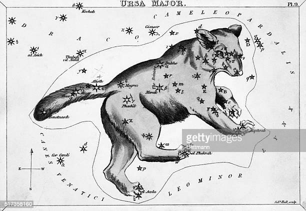 Engraving of a View of the Heavens showing Ursa Major the large bear Undated