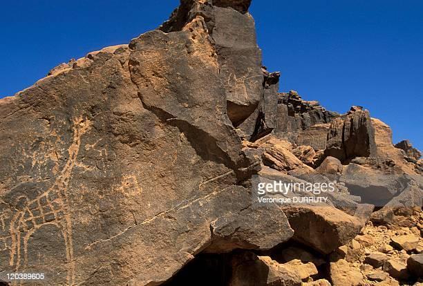 Engraving rocks in the region of Air Niger in 1998
