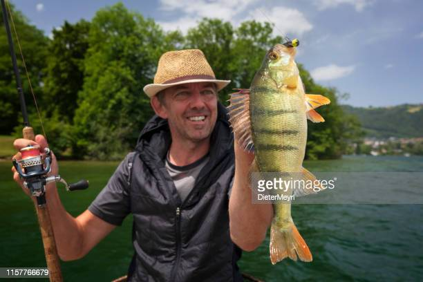 enjoy my leisure time - perch fishing at alpin lake - pike fish stock pictures, royalty-free photos & images