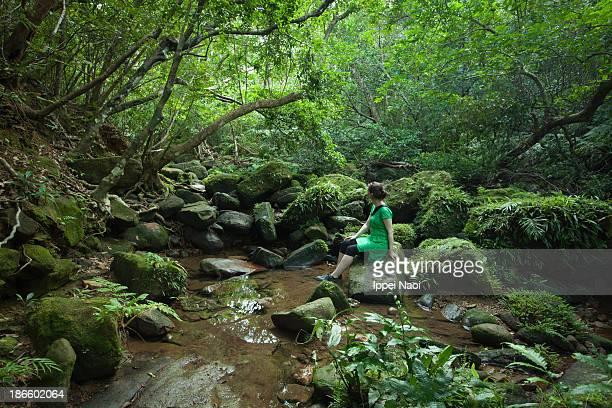 Enjoying a mossy stream in a rainforest, Japan