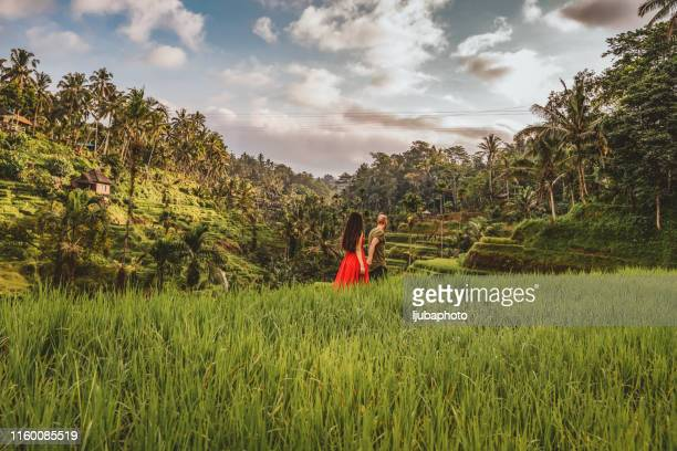 enjoying a summer walkabout - bali stock pictures, royalty-free photos & images