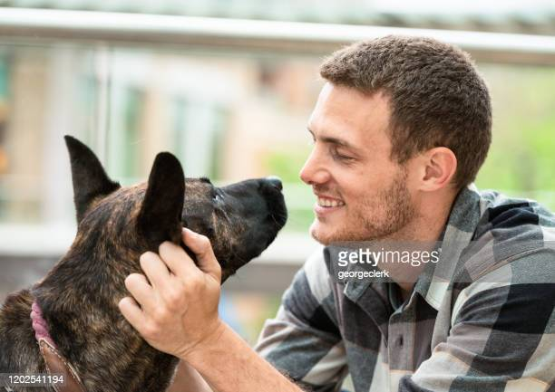 enjoying being a dog owner - i love you stock pictures, royalty-free photos & images